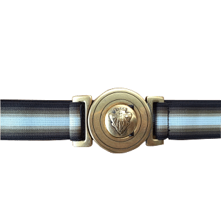 Gucci Cloth Belt with Gold Buckle